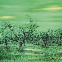 Ձիթենիներ Ալփիում | Oliviers dans les Alpilles | Վիմագրություն | Lithographie | 32x49 cm